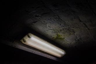 Descarte de lâmpadas fluorescentes será no dia 29 de setembro