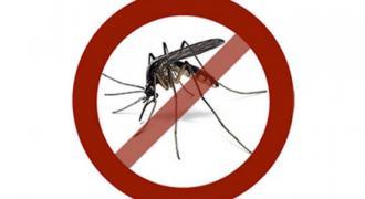 Município não tem foco de Aedes aegypti