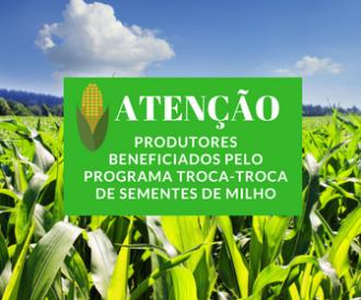 Programa Troca-Troca de sementes de milho